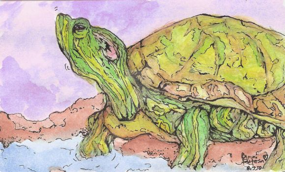 Red Ear Slider Turtle by Kitty-Girl456