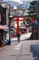 streets of Kyoto - Fushimi Inari 04 by LunaFeles