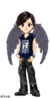 Fang- Maximum Ride by Darkness-Alchemist
