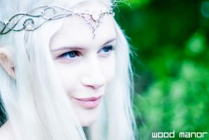 Galadriel's Youth by WoodManor
