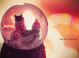 Happy Holidays by MyLifeThroughTheLens