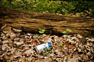 Damn Beer Can by Valentine-Photo