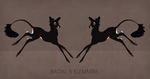 Badal x Elemmire - Fawn Design by Cactus-sis