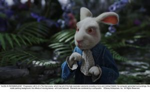 White Rabbit - Pregression 5 by AliceInWonderland