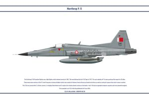 F-5 Bahrain 1 by WS-Clave