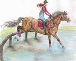 Water Training by bellequine