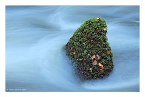 Cool Green by Kernow-Photography