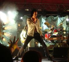 Grinderman Big Day Out by Caen-N