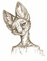 Serval by Naragon