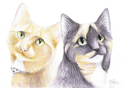 -Chester and Smudge- by Finchwing