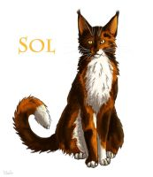 Sol by Vialir