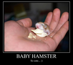 Baby Hamster MP by cgaegavga99