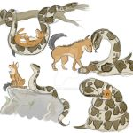The Snake and the Dhole by Aki-Hanna