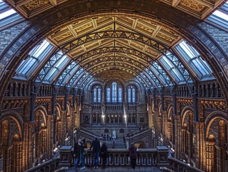 Natural History Museum by polymathmo
