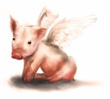 When Pigs Fly by realist-n