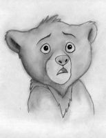 Brother Bear by Yang-tze