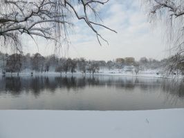 snowy waterscape by exit-humanity
