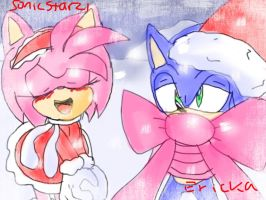 Guess what Amy got for Christmas.... by SonicStarz1