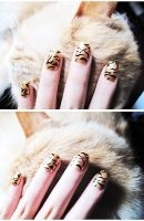 Golden Tiger Nails 2 by hinnie