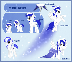 Reference Sheet Commission: Mist blitz by StarDust-Adoptables