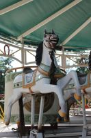 Merry go round horse - free stock - by MBKKR