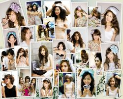 SNSD Photo Pile by 1126jjk