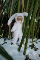Snow-Bunny-3 by deVIOsART