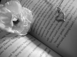 Rose in book - black and white by TaitRochelle