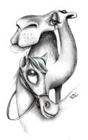 the camel and hor by ka2en