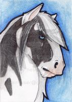 ATC: Draft Horse 2013 by AirRaiser