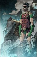 Classic Robin by Oliver Nome colored by Dany-Morales
