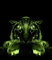 light up tiger by thewindwarrior
