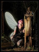 Hidden Faerie by bassw00d