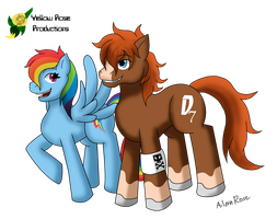 Pegasi: Rainbow Dash and Dusty by Aileen-Rose
