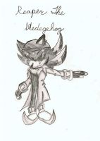 Gift: Reaper the hedgehog by soulofchao