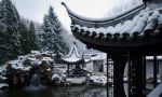 Chinese Winter by K-a-n-e