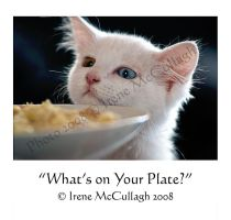 What's That on your Plate by substar
