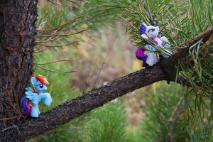 My little pony: Adventure by Uligma