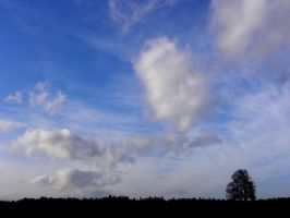 Under Blue Sky by Sudlice