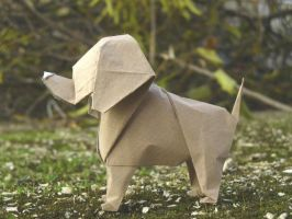 Little dog - Perrito by Figuer