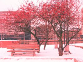 Red tree by kirsmarie