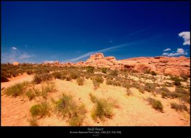 Deep, The desert meets the sky by staind80