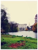 The British Palace by Ana-D