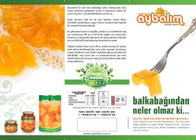 Aybalim Brochure Front by OnRckn