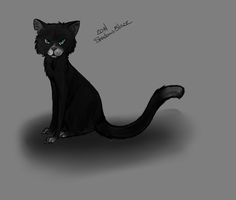 A cat by Shadow--Blaze