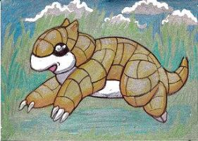 Sandshrew by Bewildermunster