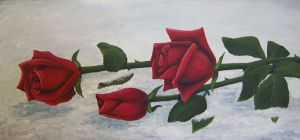 Roses in the Snow by elletennyson