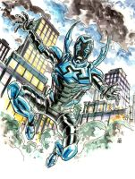 Blue Beetle by deankotz