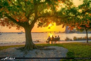 Sarasota-Sunset-at-Bayfront-Park-Island-with-Famil by CaptainKimo