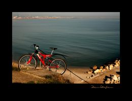 red  bicycle by DanStefan